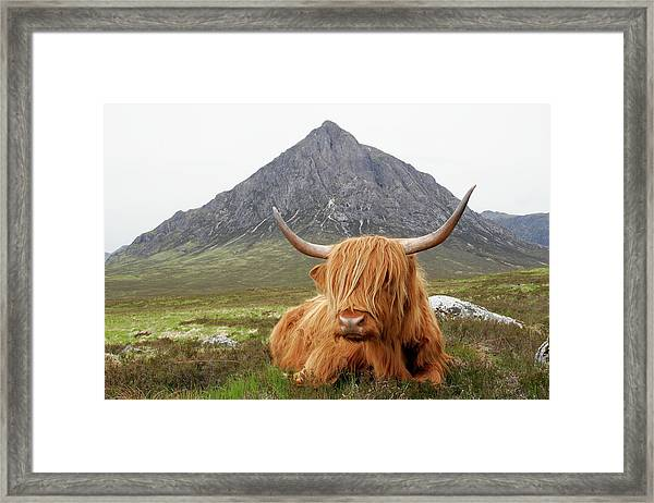 Quintessential Scotland Framed Print by Thedman