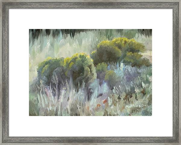 Rabbit Brush Study Framed Print