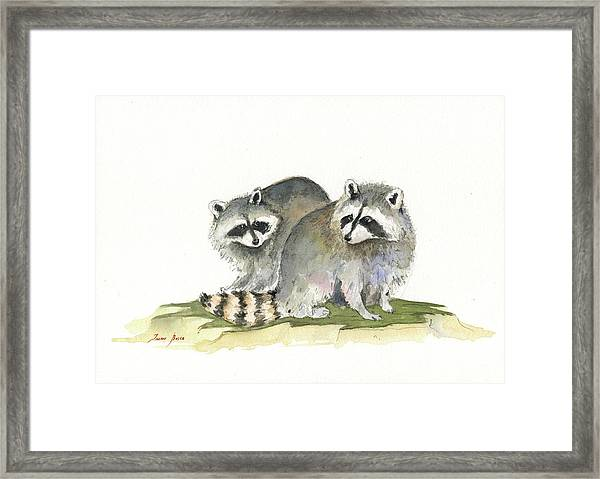 Raccoon Friendship Framed Print