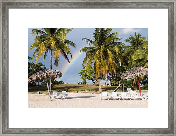 Rainbow Between Palm Trees On Playa Framed Print
