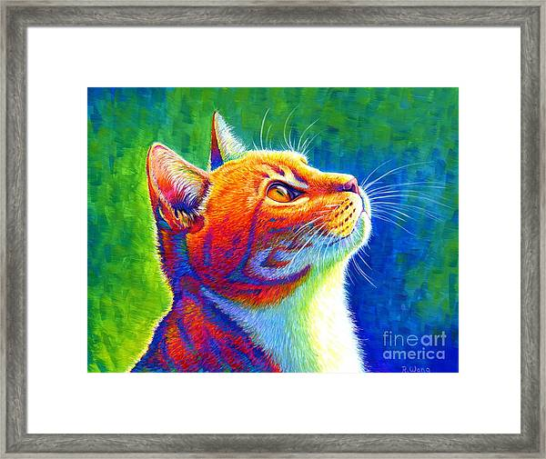 Rainbow Cat Portrait Framed Print