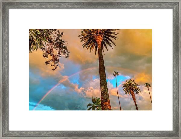 Rainbow Over The Palms Framed Print