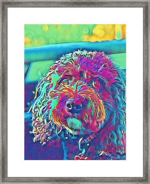 Rainbow Pup Framed Print