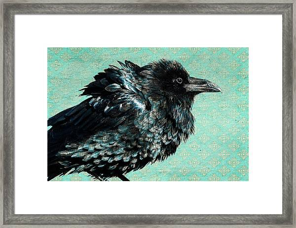 Raven Maven Framed Print
