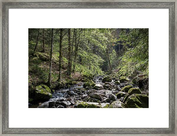 Ravenna Gorge Framed Print