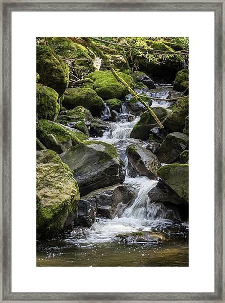Ravenna Stream Framed Print