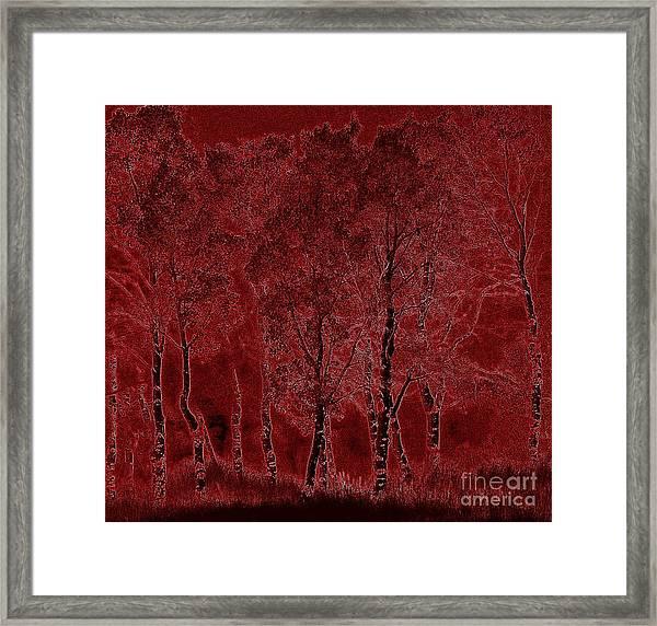 Red Aspen Grove Framed Print
