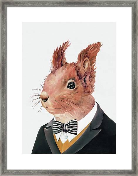 Red Squirrel Framed Print