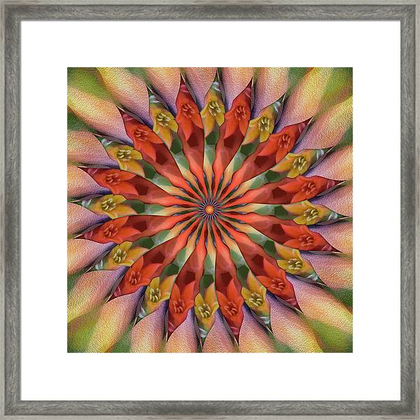 Red Velvet Quillineum Framed Print