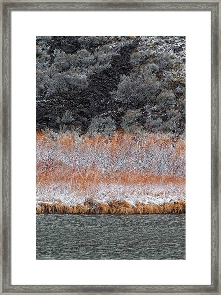Framed Print featuring the photograph Red Willow Rio by Britt Runyon