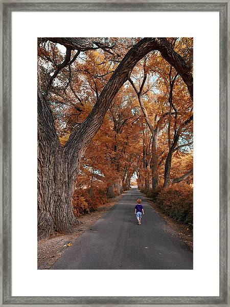 Redhead Fall Walkabout Framed Print