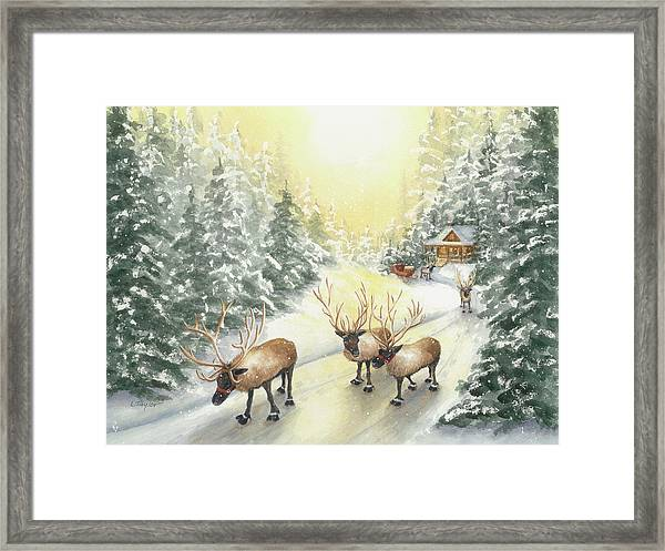 Hoofing It Under The Midnight Sun Framed Print