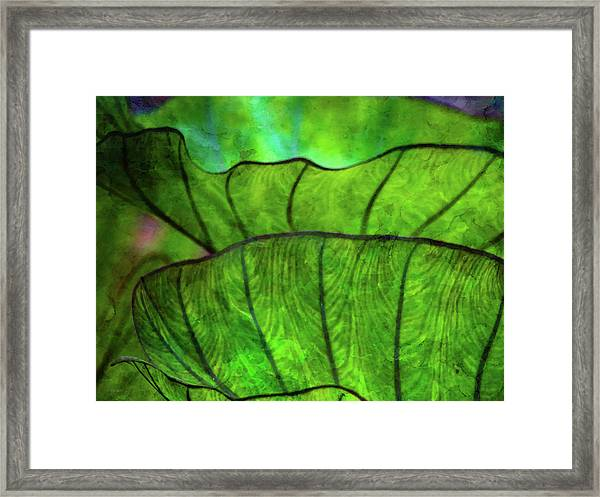 Repetition 5155 Idp_2 Framed Print