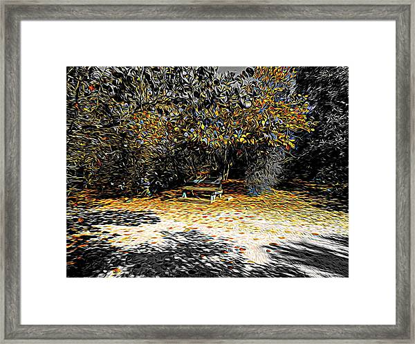 Resting Reflections Framed Print