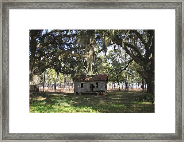 Resting Under The Big Shade Trees Framed Print