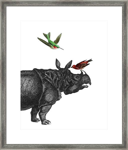 Rhinoceros With Birds Art Print Framed Print