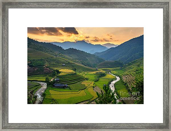 Rice Field On Terraces Panoramic Framed Print