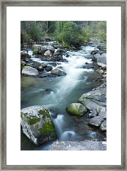 Rio Grande Headwaters Framed Print