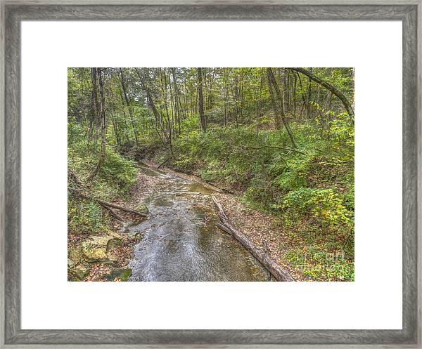 River Flowing Through Pine Quarry Park Framed Print