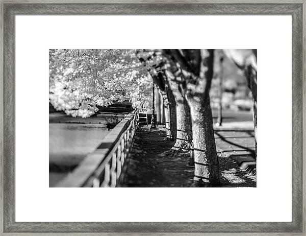 River Lines Framed Print