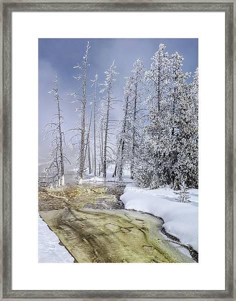 River Of Gold - Jo Ann Tomaselli Framed Print