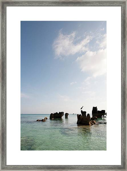 Rock Formations In Ocean With Birr Framed Print