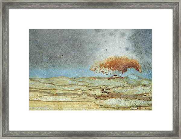 Rock Stain Abstract 1 Framed Print