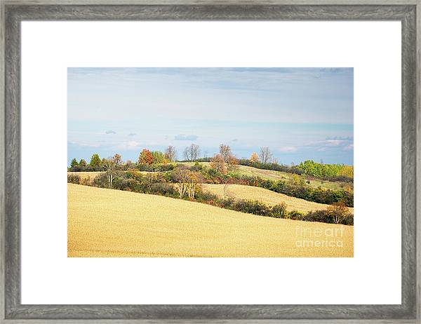 Rolling Hills In Fall Framed Print