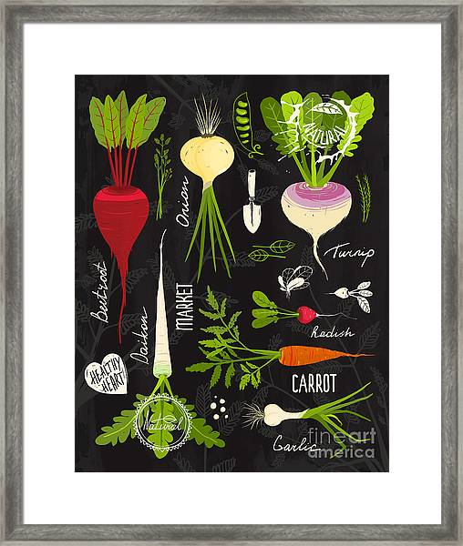 Root Vegetables With Leafy Tops Set For Framed Print