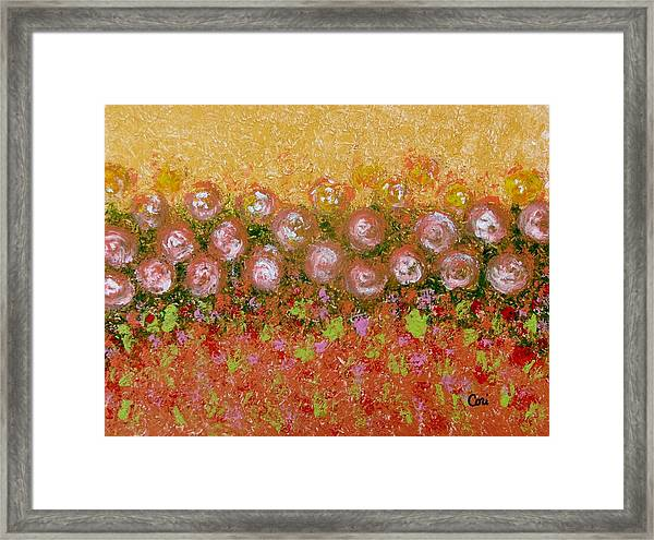 Roses Of Autumn Framed Print