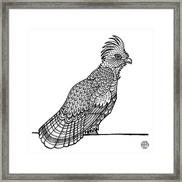 Framed Print featuring the drawing Ruffed Grouse by Amy E Fraser