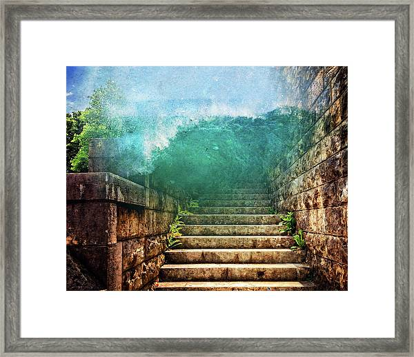 Run Run Run Framed Print