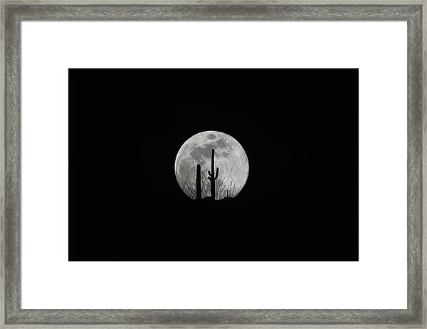 Framed Print featuring the photograph Saguaro Moon Silhouette  by Chance Kafka