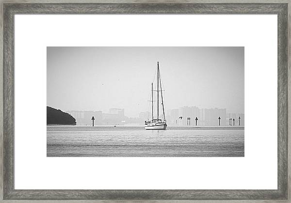 Sail Out Of Sarasota Framed Print