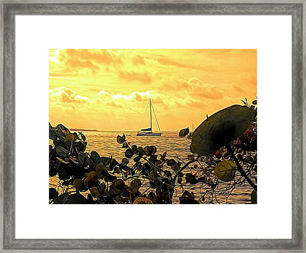 Sail The Manatee River Framed Print