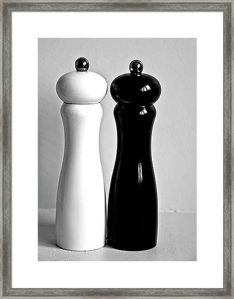 Salt & Pepper Framed Print by Daniela White Images