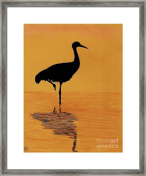 Sandhill - Crane - Sunset Framed Print