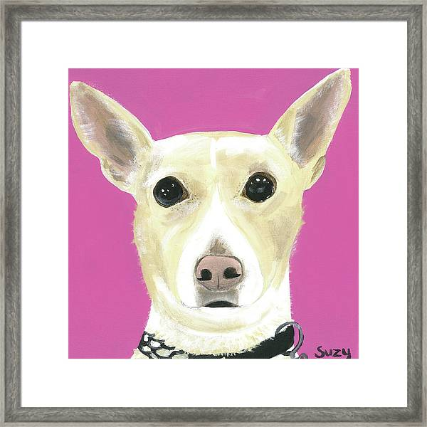 Sandy's Lulu Framed Print