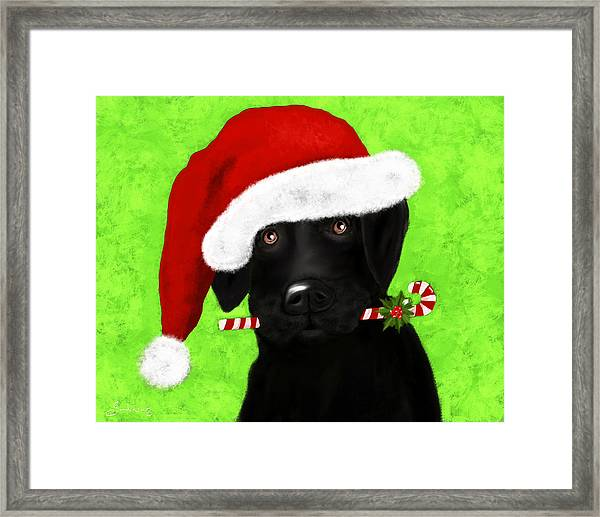 Santa's Little Helper Framed Print