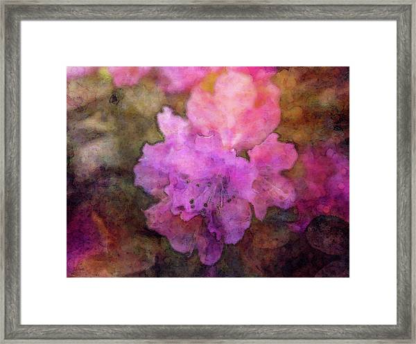 Saturation 9041 Idp_2 Framed Print