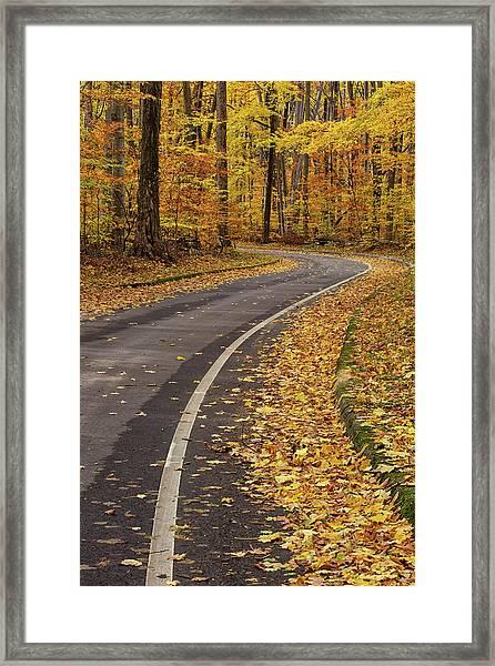 Scenic Drive 3 Framed Print