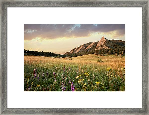 Scenic View Of Meadow And Mountains Framed Print