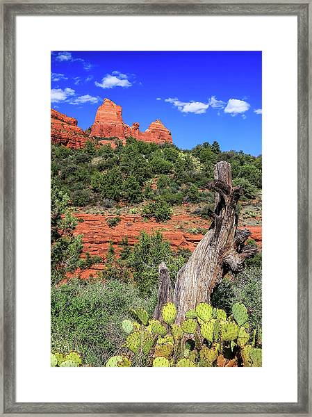 Framed Print featuring the photograph Schnebly Hill View, Sedona by Dawn Richards