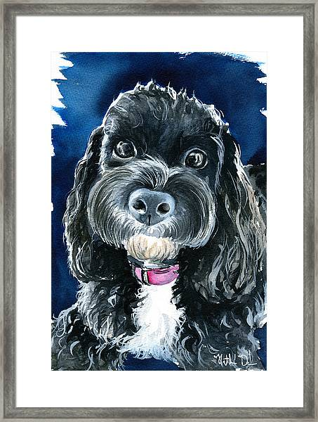 Scout - Cavoodle Dog Painting Framed Print