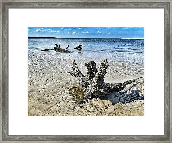 Sculpted By The Sea Framed Print