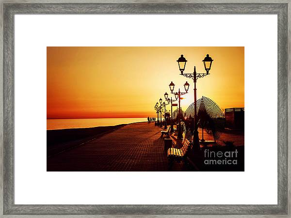 Sea Embankment Path Poad Palm Tree Framed Print