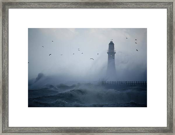 Sea Gulls Fly As Waves Hit The Framed Print