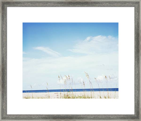 Sea Oats On Beach Framed Print