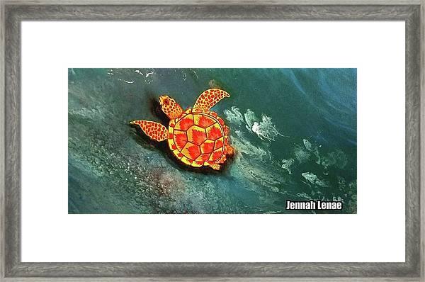 Sea Turtle  Framed Print