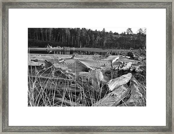 Framed Print featuring the photograph Seascape by Jeni Gray
